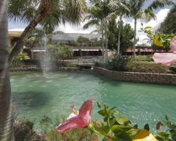 REBIRTH OF A SHOPPING CENTER: Fountains Center in West Boca Raton Announces New Tenants, New Direction